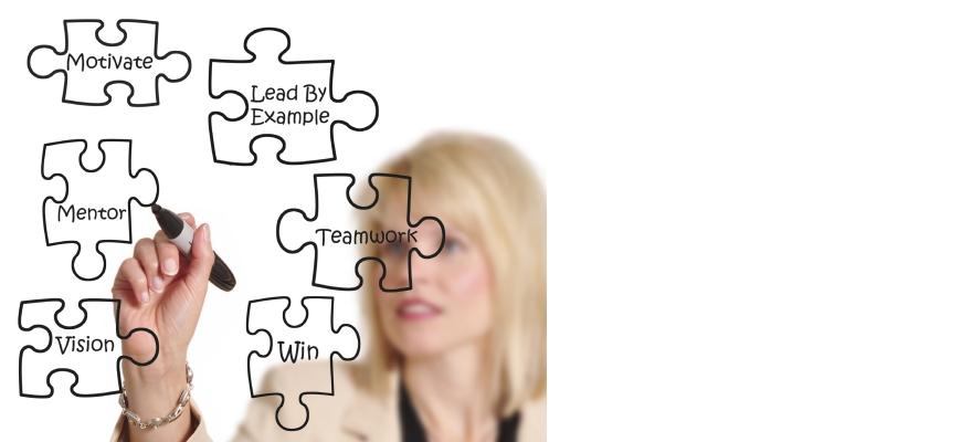Sales Mentoring Program